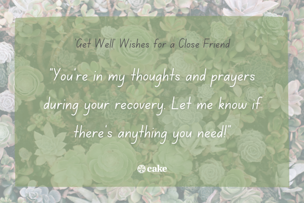"""Example of a """"get well"""" wish for a close friend over an image of succulents and plants"""