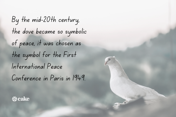 Fact about the history of the dove symbol with an image of a dove