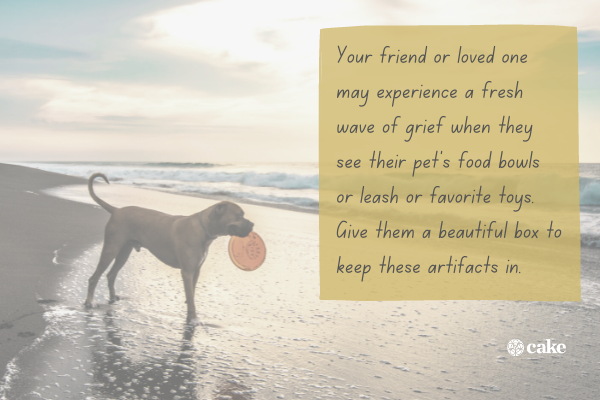 Gift idea with an image of a dog at the beach in the background